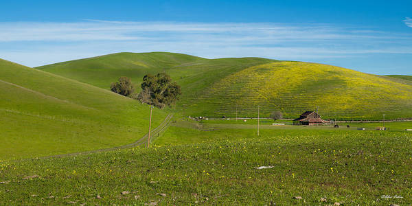 Photograph - Heavenly Rural by Alexander Fedin