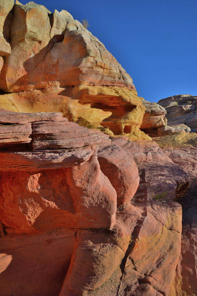 Photograph - High Above Pastel Canyon In Valley Of Fire by Ray Mathis