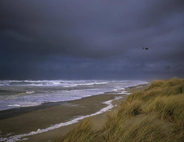 Photograph - High Surf by Robert Potts