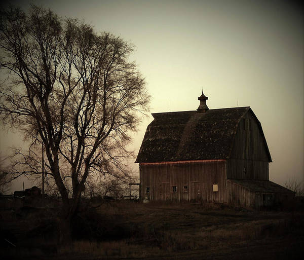 Wall Art - Photograph - Highway 196 Barn by Toni Grote