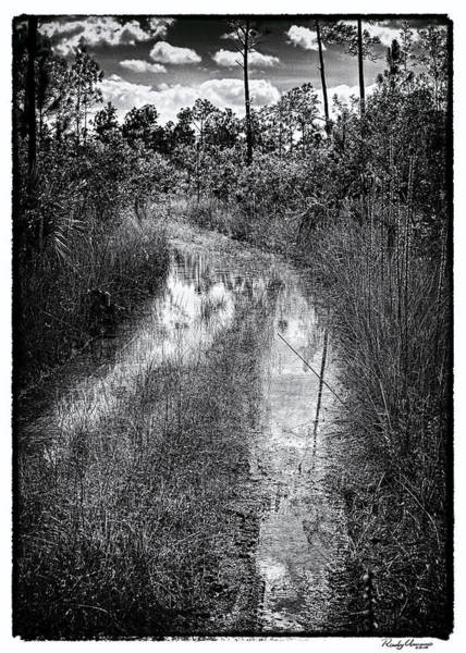 Photograph - Hiking Trail  by Rudy Umans
