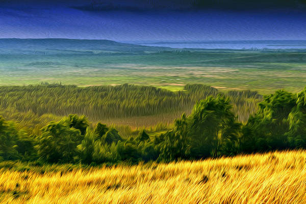 Photograph - Hill Fields Of Hay And Sunshine by John Williams