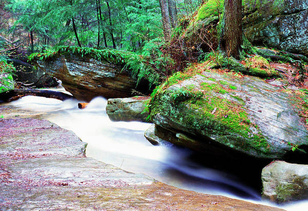 Photograph - Hocking Hills by Thomas R Fletcher