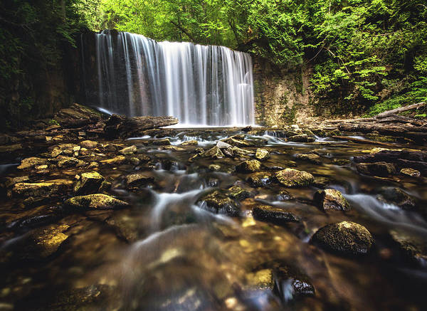 Wall Art - Photograph - Hoggs Falls by Cale Best