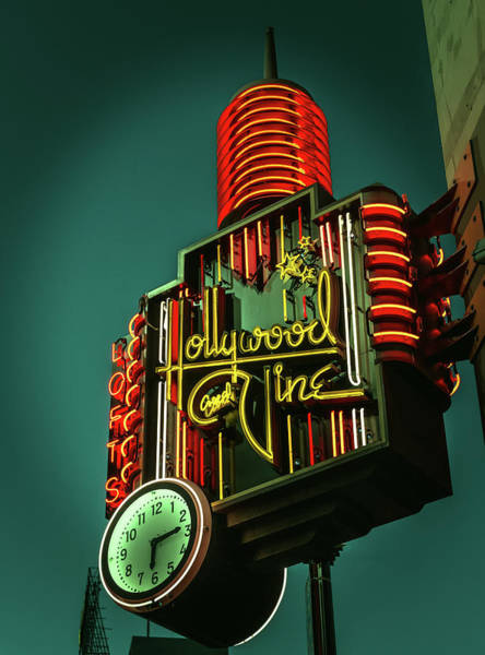 Wall Art - Photograph - Hollywood And Vine by Mountain Dreams