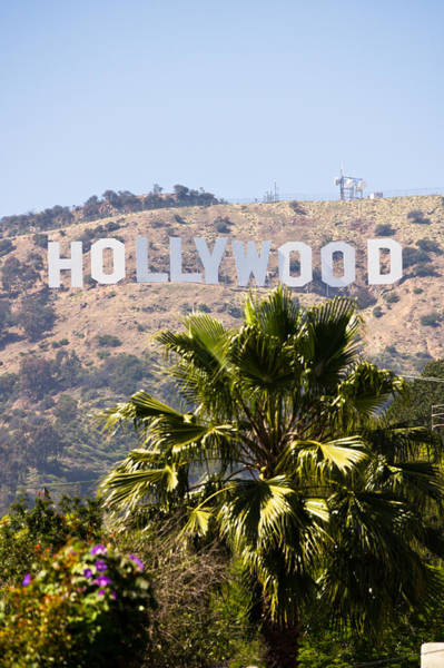 Editorial Photograph - Hollywood Sign Photo by Paul Velgos