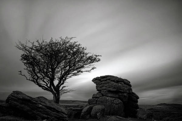 Photograph - Holwell Tor And Lone Tree On Dartmoor by Pete Hemington