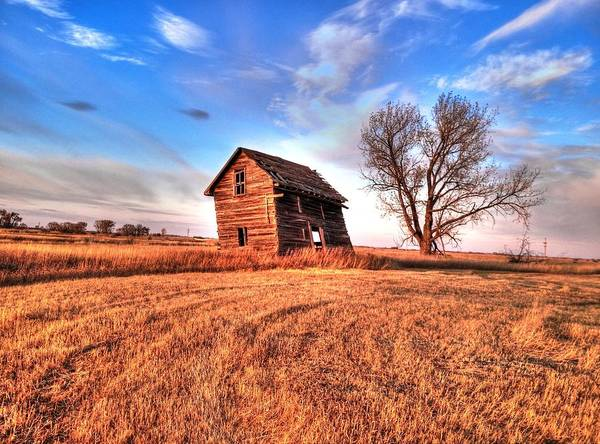 Photograph - Homestead by David Matthews