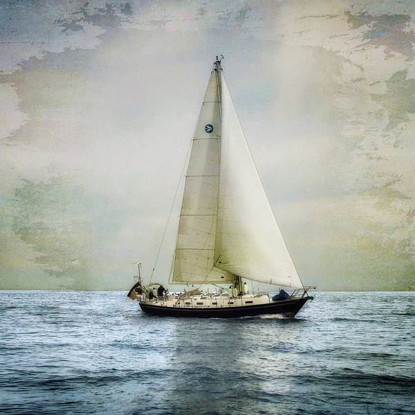 Photograph - Homeward Bound by Karen Lynch