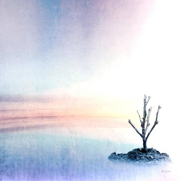 Photograph - Horizon by Bob Orsillo