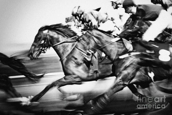 Photograph - Horse Racing by Dimitar Hristov