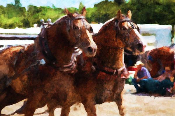Digital Art - Horse Study #24 by Everlasting Equine Horse Art