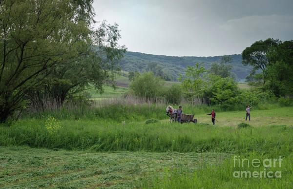 Photograph - Horsedrawn Haycart, Transylvania 2 by Perry Rodriguez