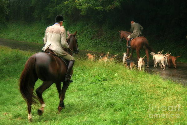 Photograph - Horses And Hounds by Angela Rath