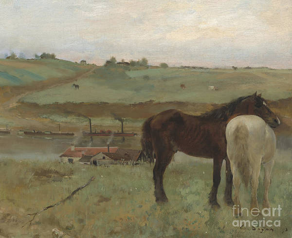 1871 Painting - Horses In A Meadow by Edgar Degas