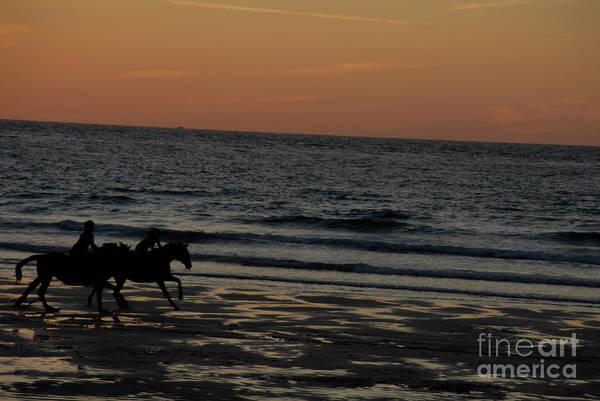 Ives Photograph - Horses by Jenny Potter