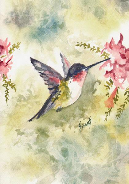 Painting - Hummingbird by Sam Sidders