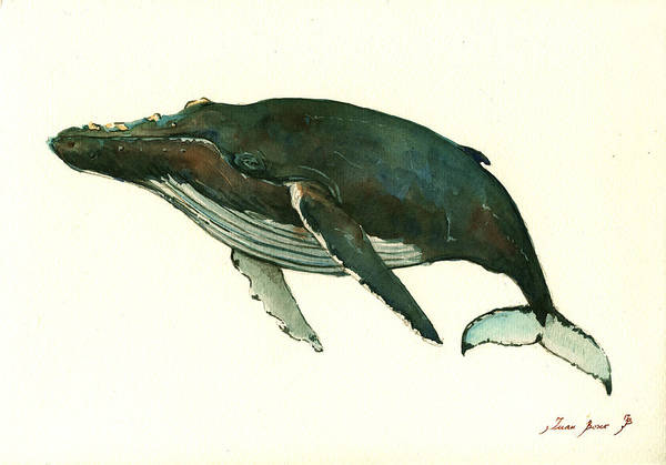 Right Painting - Humpback Whale  by Juan  Bosco