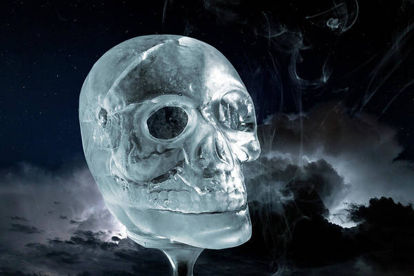 Ice Skullpture Art Print