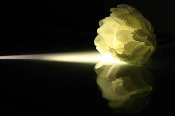 Illuminations Photograph - Illumination by Hyuntae Kim