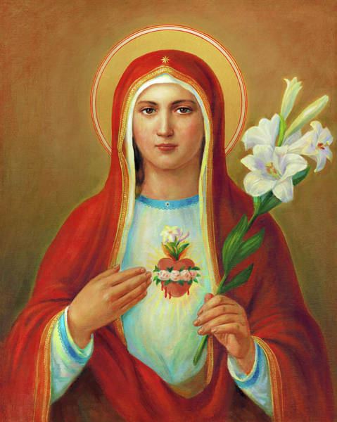 Wall Art - Painting - Immaculate Heart Of Mary by Svitozar Nenyuk