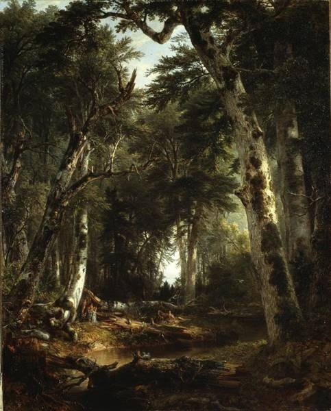 Wall Art - Painting - In The Woods by Asher Brown Durand