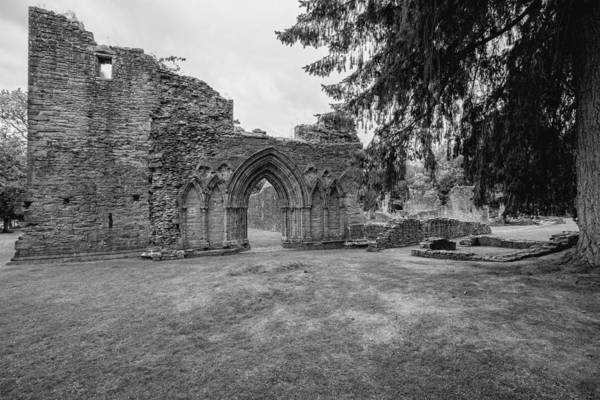 Inchmahome Priory Art Print