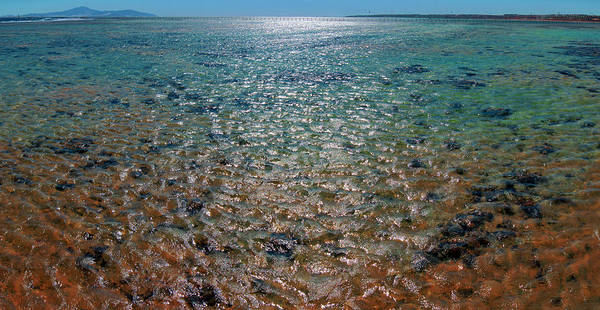 Photograph - Inner Reef Of Nabq Bay by Sun Travels