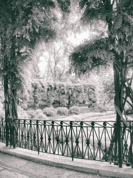 Photograph - Italianate Garden Terrace by Jessica Jenney
