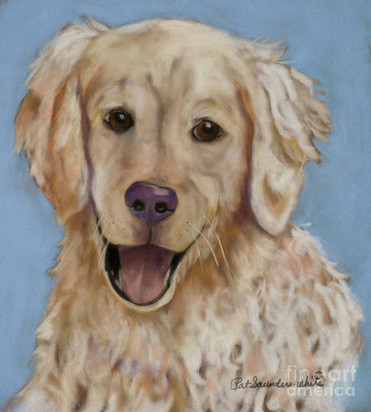 Painting - Jasper by Pat Saunders-White