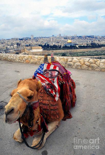Photograph - Jerusalem From Mount Olive by Thomas R Fletcher