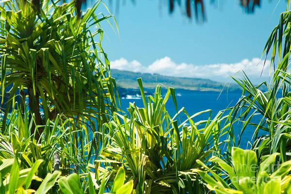 Photograph - Kahanu Garden Honomaele Hana Maui Hawaii  by Sharon Mau