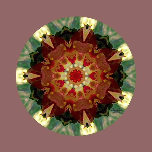 Digital Art - Kaleidoscope - Warm And Cool Colors by Deleas Kilgore