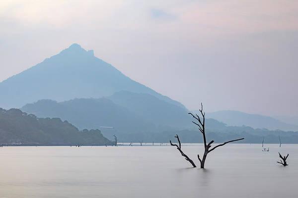 Central Asia Photograph - Kandalama Lake - Sri Lanka by Joana Kruse