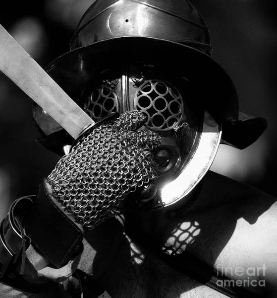 Wall Art - Photograph - Knight Fight 1 by Bob Christopher