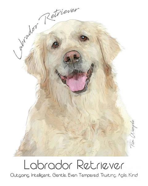 Digital Art - Labrador Retriever Poster by Tim Wemple