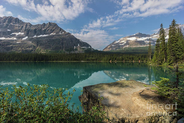 Photograph - Lake O'hara by Carrie Cole