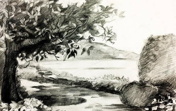 Beach Grass Drawing - Lake Shore By Ivailo Nikolov by Boyan Dimitrov