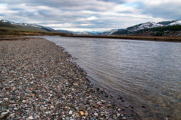 Photograph - Lamar River by Steve Stuller