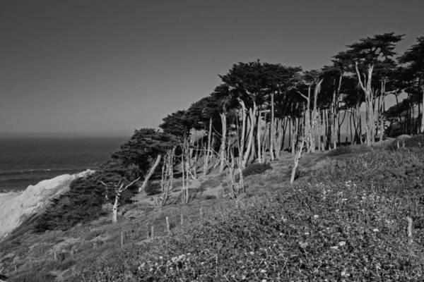 Lands End In San Francisco Art Print