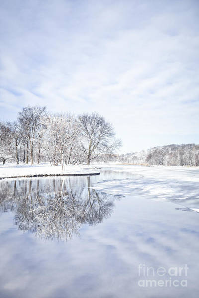 Wall Art - Photograph - Last Winter's Dream by Evelina Kremsdorf