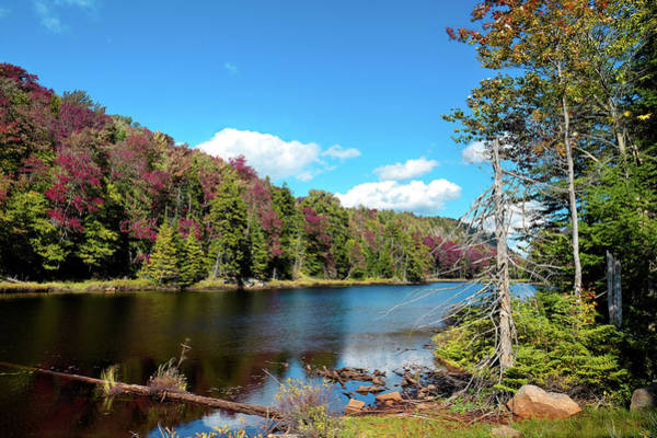 Photograph - Late September On Bald Mountain Pond by David Patterson