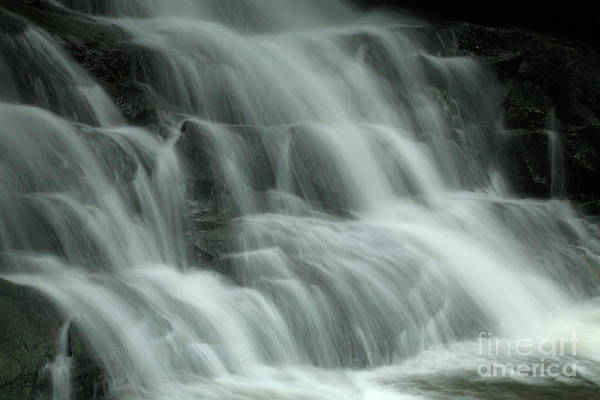 Photograph - Laurel Falls by Timothy Johnson