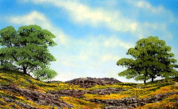 Painting - Lava Rock And Flowers by Frank Wilson