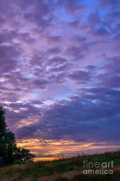Lavender Mist Wall Art - Photograph - Lavender Dawn  by Thomas R Fletcher