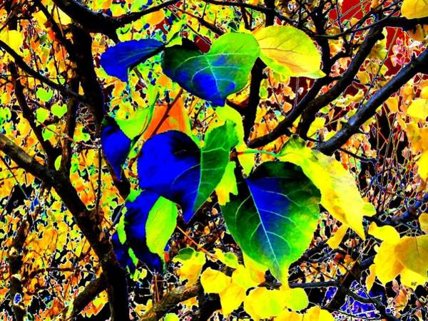Borden Digital Art - Lavish Leaves 1 by Will Borden