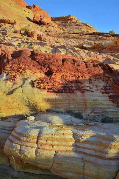 Photograph - Layers Of Color In Valley Of Fire by Ray Mathis