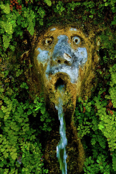 Photograph - Le Cento Fontaine  by Harry Spitz