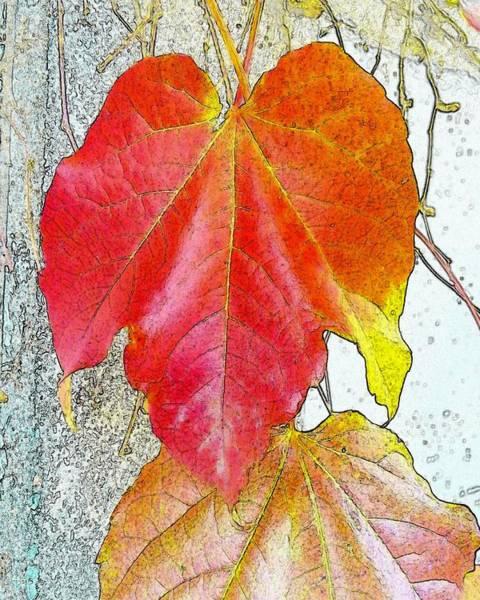 Digital Art - Leaf by Kumiko Izumi