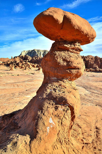 Photograph - Leaning Tower by Ray Mathis